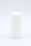 Palmwax candle 100x80mm color