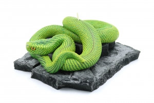 Snake candle stone plate