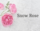Scent oil  50 ml Snow Rose